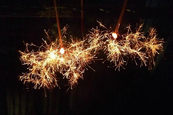 20140828_IMG_7773_firework.jpg