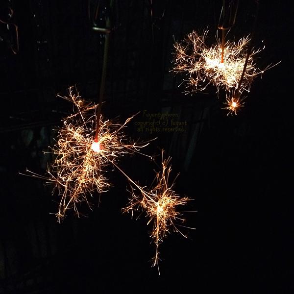 20140828_IMG_7777_firework.jpg